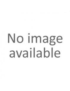 043MP124 Gemauerter Gelegentlicher Stein (Polychrome)